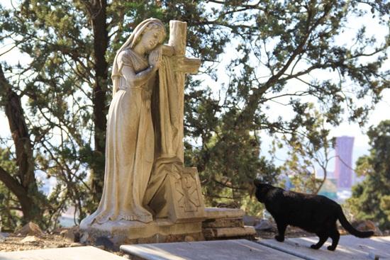 http://letiziabarcelona.com/wp-content/uploads/2014/02/cementerio-Montjuic4.jpg