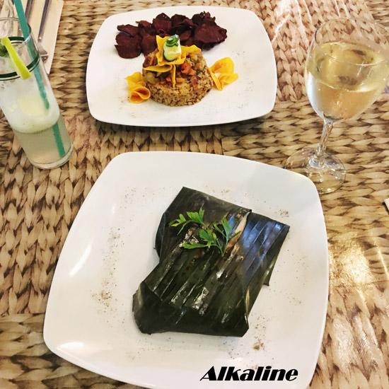 alkaline-1